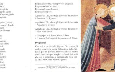 del Papa • maggio 2019